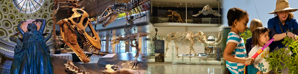 Museum Of Natural History Houston Coupons