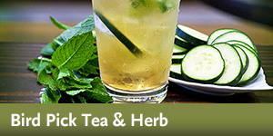 Bird Pick Tea & Herb