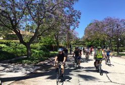 Community Rides photo