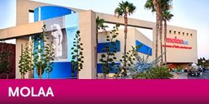 Museum of Latin American Art - Destination Discount